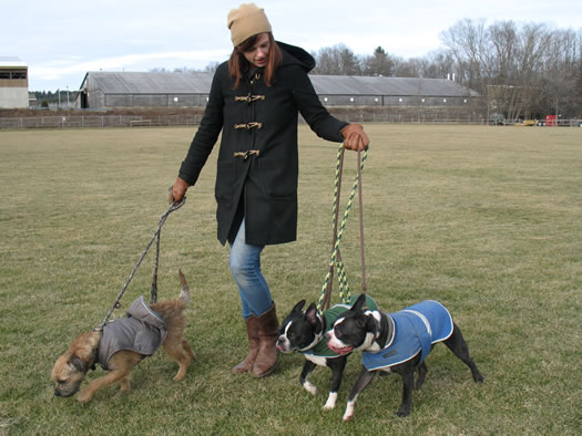 hounds_on_the_hudson_jen_pursley_cold_weather